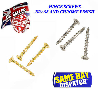 Hinge Screws Chrome / Brass Flush with Door Hinges  Perfect fit Screw
