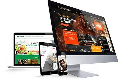WEBSITE DESIGN PACKAGE unlimited Pages + FREE HOSTING RISK FREE Demo