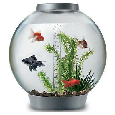 Fish Bowl Aquarium Tank Biorb 30 Silver Coldwater Standard Led Light Bio Filter