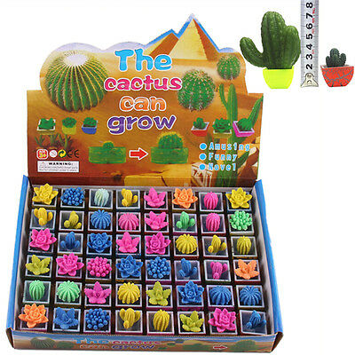Growing Cactus Water Swell Growing Toy Cactus Gardens Gift For Toys SEAU