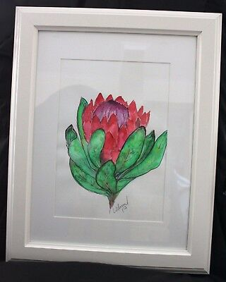 Protea in Frame ready to hang