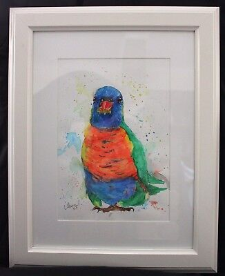Rainbow Lorikeet in Frame ready to hang