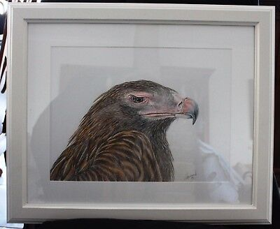 Eagle in Frame ready to hang