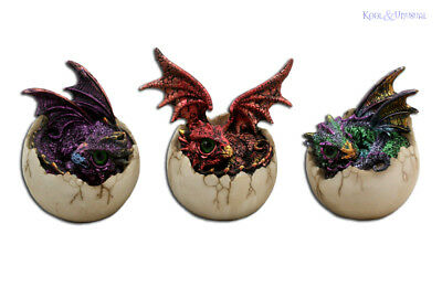 Gorgeous Set of 3 Baby Dragons Hatching from Eggs * Dragon Statue Figurine