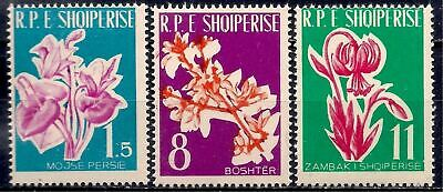 Albania 1961 Flowers Cyclamen Forsythia Lily Plants 3v set MNH