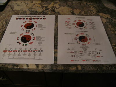 Taoist I-Ching Medicine Chart 1 and Chart 2 Laminated