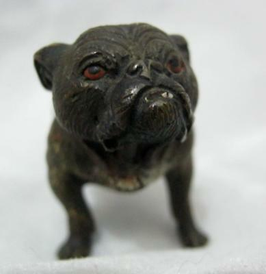 Cold Painted Austrian Bronze Figure of a BULLDOG - Lovely item