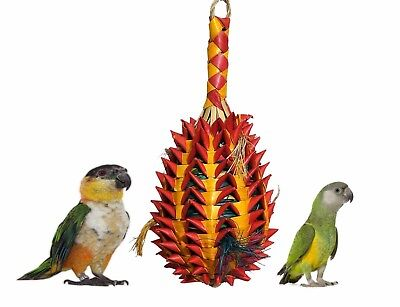 Woven Wonders Foraging Pineapple Senegal African Grey Parrot Cage Toy 22319