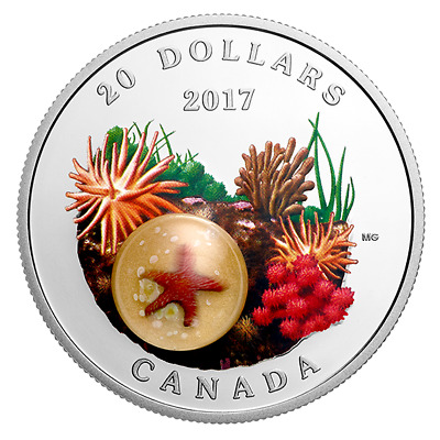 SEA STAR - UNDER THE SEA - 2017 $20 1 oz Fine Silver Coin - Royal Canadian Mint