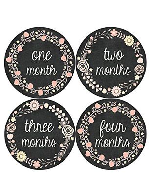 Months in Motion 356 Monthly Baby Stickers Baby Girl Months 1-12 Chalkboard, New