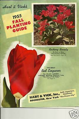 Hart & Vick's Fall Planting Guide 1955 Catalog Red Empress Rose
