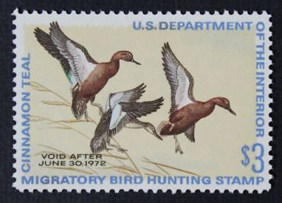 RW38-RW 38 1971 Federal Duck Stamp Unsigned No Gum EBAY Low (RW1-83 in Stock)