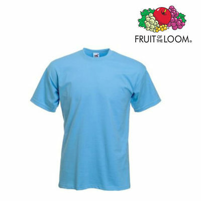Lot de 10 T-shirts homme manches courtes FRUIT OF THE LOOM COULEUR BLEU CIEL