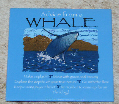 """LEANIN TREE """"Advice From A Whale"""" #26327 Magnet~Go With The Flow~Make A Splash~"""