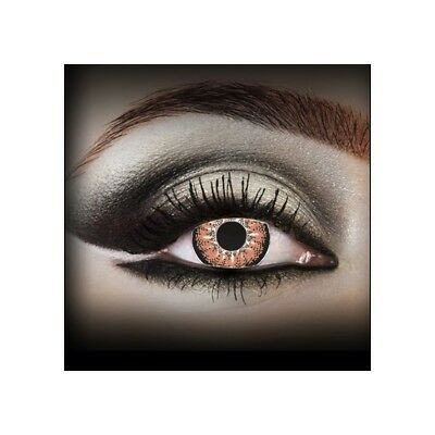 Lentilles de couleur marron 2 tons K2010 - brown color contact lenses