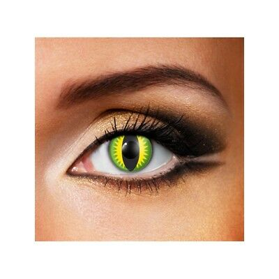 Lentilles de contact couleur 24H Dragon vert - 1 day color contact lens green