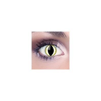 Lentilles oeil de dragon jaune F54 - yellow dragon fancy color lens