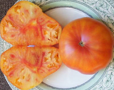Hazel Mae Tomato - A Very Large Yellow & Pink Bi-colored Tomato - 10 Seeds