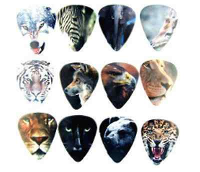 Assorted Wild Animal Lion Wolf Guitar Picks Lot of 10 1.0 mm Free Tracking New!