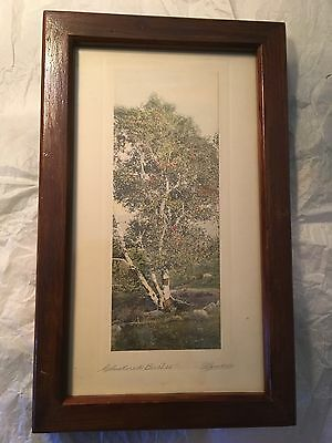 Signed, Framed Hand Colored Nature  Photograph by J. H. Lamson