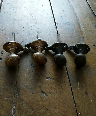 vintage solid brass small door knobs. oval. duck egg