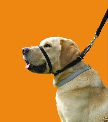 Canny Collar no pull collier chien - Taille 7