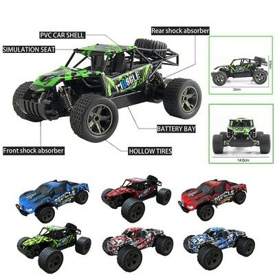 1:20 2WD High Speed RC Racing Car & 4WD Truck Off-Road Buggy