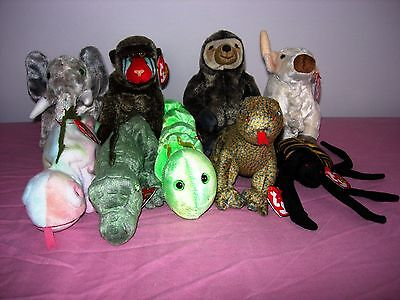 TY BEANIE ANIMALS, REPTILES and INSECTS **read below**