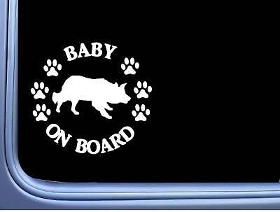"Baby on Board Border Collie L481 6"" Sticker decal"