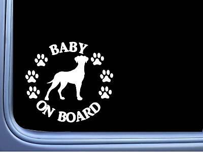 """Baby on Board Great Dane Uncropped L526 6"""" Sticker dog decal"""