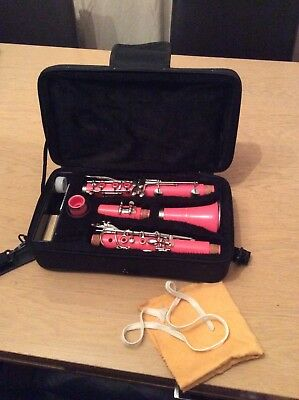 Pink clarinet hardly used and immaculate condition. inc excessories.