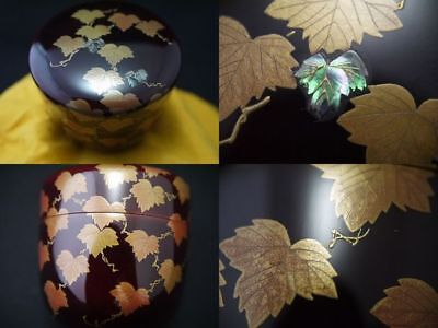 Japanese Traditional Lacquer Wooden Tea Caddy IVY makie O-Natsume (915)