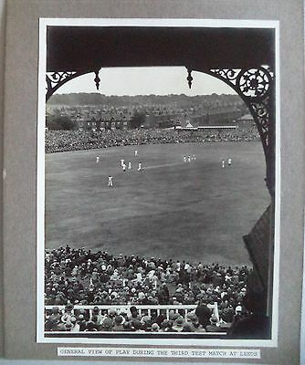 "ENGLAND v AUSTRALIA 1930 3rd TEST SUPERB SEPIA 8"" x 6"" CRICKET PRESS PHOTOGRAPH"