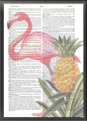 Pineapple Pink Flamingo Altered Art Print Upcycled Vintage Dictionary Page