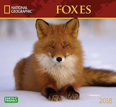 National Geographic Foxes 2018 Wall Calendar Beautiful Animal Nature Photography