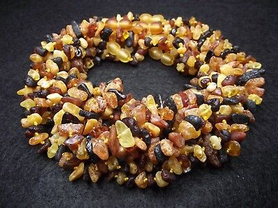Lot 10 Raw Baltic Amber Baby Necklace Mixed Color 12.20 - 13.00 inches