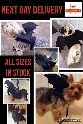 HALLOWEEN DOG CAT BAT WINGS sz XS-S-M*NEXT DAY DELIVERY UK* fancy dress costume