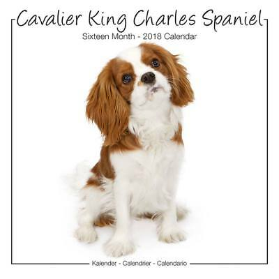 Calendrier Cavalier King Charles Sudio 2018