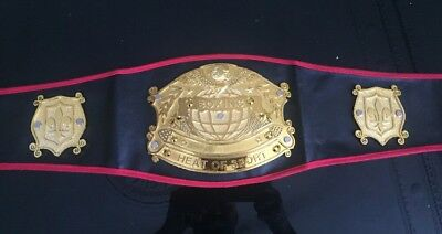 Boxing / wrestling / Sport Kids Belt action Championship  Superstar New Free PP