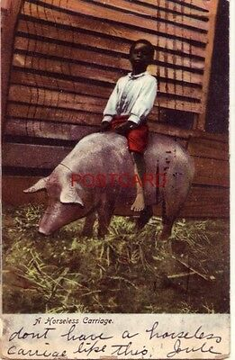 pre-1907 A HORSELESS CARRIAGE  young boy rides a hog 1906