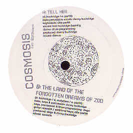 Cosmosis - Tell Her - White - 2004 #130174