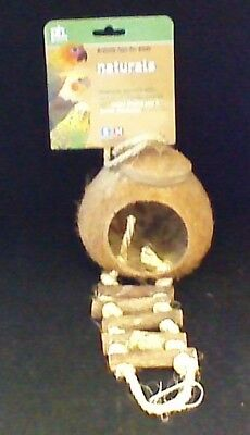 Coconut Bird House with Ladder