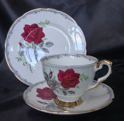 Vintage Royal Stafford China Trio Roses To Remember Tea Cup Saucer Plate Kitsch