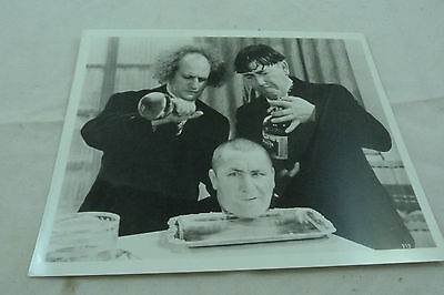 Vintage The Three Stooges Larry Moe Curly Black White Still Photograph Print
