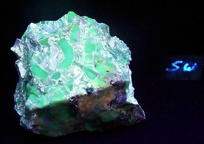 Large Fluorescent Chalcedony and Magnesite SW LW UV Mineral Specimen
