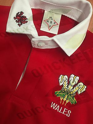 Welsh Wales Rugby shirt  *3-6 Months to 13-14 Year Olds* BABIES/CHILDREN SCHOOL