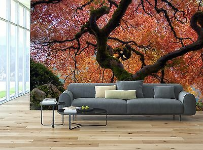 Japanese Maple Tree Mural Photo Wallpaper Decor Paper Wall Background 3D