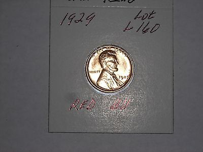 1929  Lincoln Cent  - Wheat Penny  -  RED BU,  LOT L160