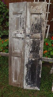 1800's Raised Panel Doors Cupboard Window Shutter Doors 55 3/8