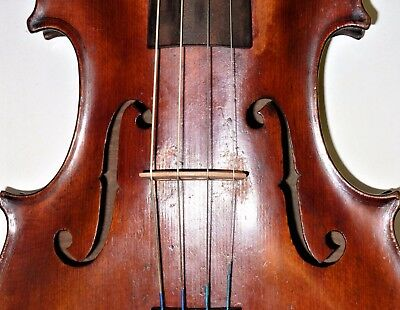 Nice STAINER Viola 38 cms back